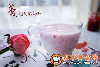 做正宗消食开胃的蔓越莓酸奶果昔的图片步骤14
