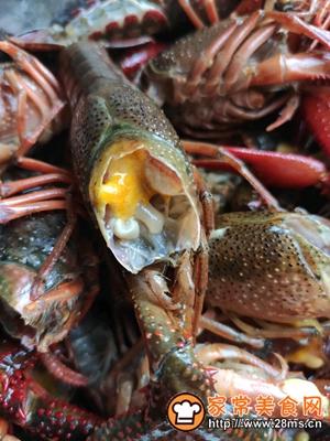 做正宗火火的小龙虾的图片步骤3