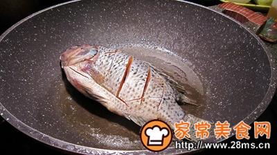 做正宗意大利醋红焖鱼的图片步骤3