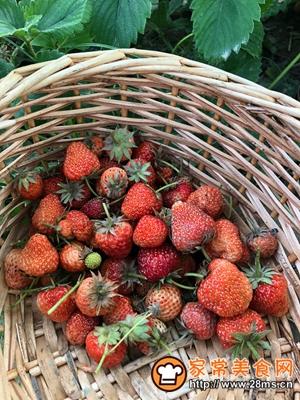 做正宗草莓酒的图片步骤3
