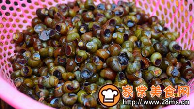 做正宗紫苏炒石螺的图片步骤2