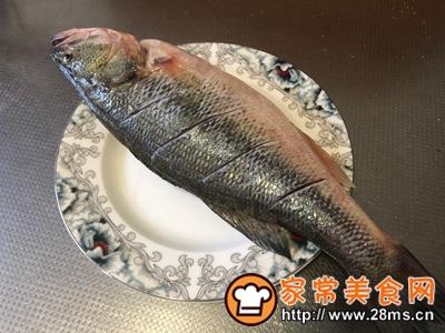 做正宗最适合宝宝吃的清蒸鲈鱼的图片步骤1