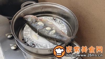 做正宗最适合宝宝吃的清蒸鲈鱼的图片步骤2