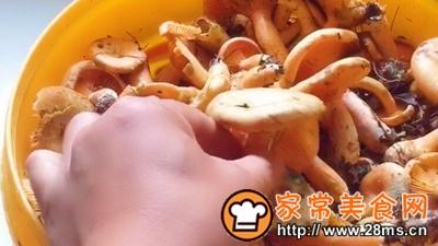 做正宗湘西特色:枞菌炒肉的图片步骤1