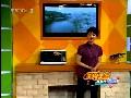 太湖银鱼视频
