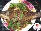 红烧咸鲤鱼