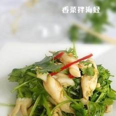 香菜拌海蛏
