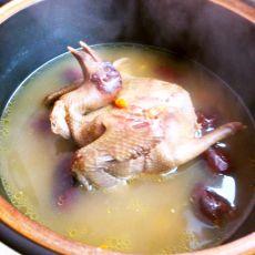 红枣鸽子汤