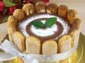 提拉米苏享受不样的蛋糕