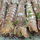 清蒸皮皮虾大闸蟹