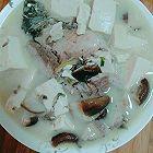 奶白鱼汤舟