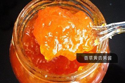 香草黄杏果酱