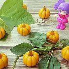 紫薯夹心南瓜