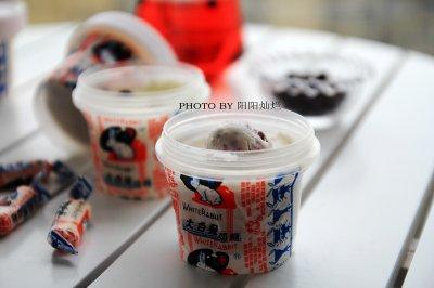 黑醋栗冰淇淋