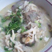 鲢鱼蘑菇汤