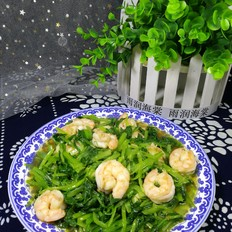 小白菜炒虾仁