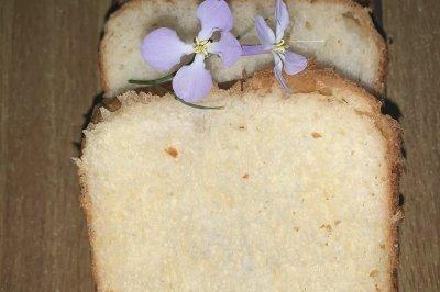 面包机版早餐主食吐司面包