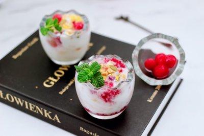 自制蔓越莓冰酸奶
